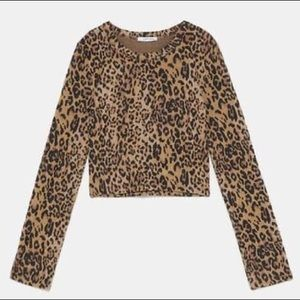 Zara Cheetah Crop Top
